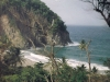 Jungle Bay in Dominica